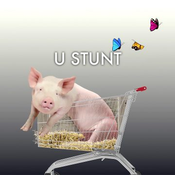 U Stunt Title 2